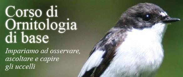Corso di Ornitologia di base 2012