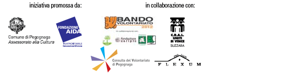 cinema-sotto-le-stelle-poster-PARTNER