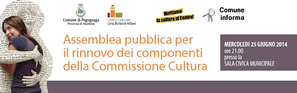 Mercoledì 25 giugno 2014. Assemblea pubblica per il rinnovo dei componenti della Commissione Cultura